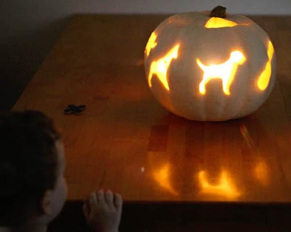 Советы как вырезать тыкву на Хэллоуин